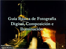 Gua Bsica de Fotografa Digital, Composicin e Iluminacin.