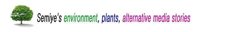 Semiye's environment, plants, alternative media stories.