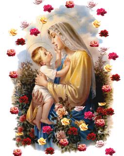 Imagenes De La Virgen Con Rosas - IMÁGENES DE LA VIRGEN MARÍA ROSA MÍSTICA Gifs y
