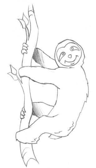 desenhos para colorir desenho de bicho preguiça para salvar