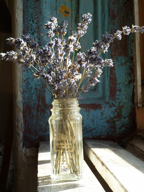 Dried lavender bouquet in window