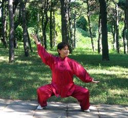 Fr. Dr. Liu Yafei - Der Phönix fliegt der Morgensonne entgegen
