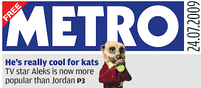 Compare The Meerkat - Metro Front Page