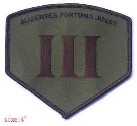 Audentes Fortuna Juvat