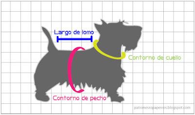 medidas perro