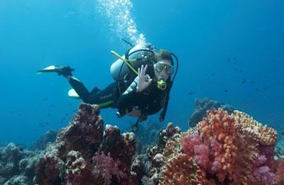 Scuba-diving Wear