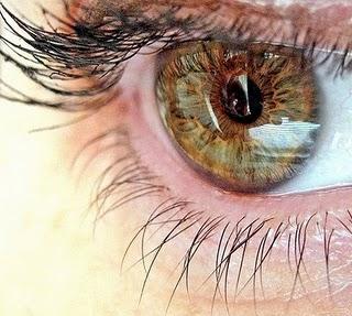 Visão - Olho