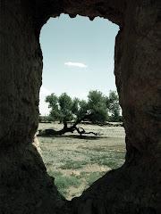 Skoura, Ouarzazte