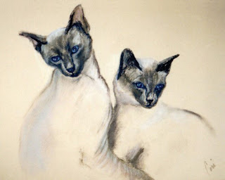 Sibling Love - Siamese Cats By Cori Solomon