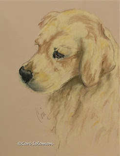 Golden Retriever - Golden Delights By Cori Solomon