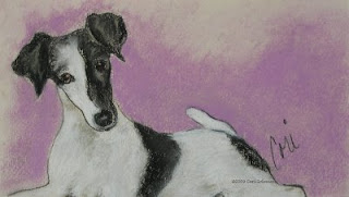 Foxy - Smooth Fox Terrier by Cori Solomon
