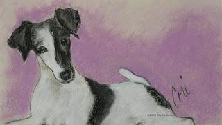 Foxy - Smooth Fox Terrier by Cori Solomon