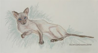 Siamese Cat - Molly By Cori Solomon