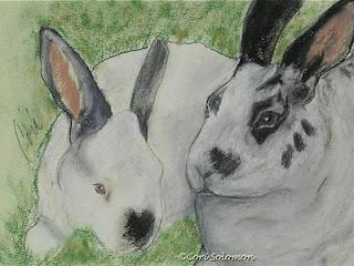 Bunny Rabbits - Fur Balls By Cori Solomon