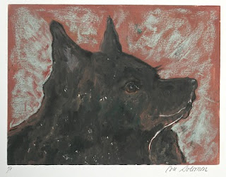 Schipperke Dog Art Adoring Eyes by Cori Solomon