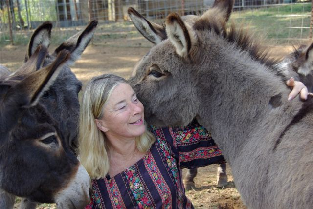 Tonie and the Donkeys