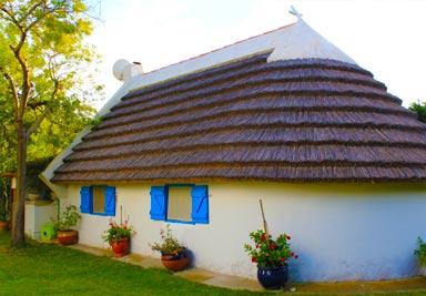 La camargue et la cabanette les toits des cabanes de gardian for Maison de la camargue