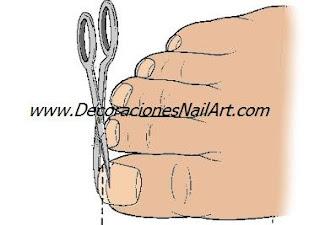 El cuidado de Manos y pies El cuidado de Manos y pies corte Dibujo u 25C3 25B1as