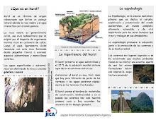 Brochure ICEKE