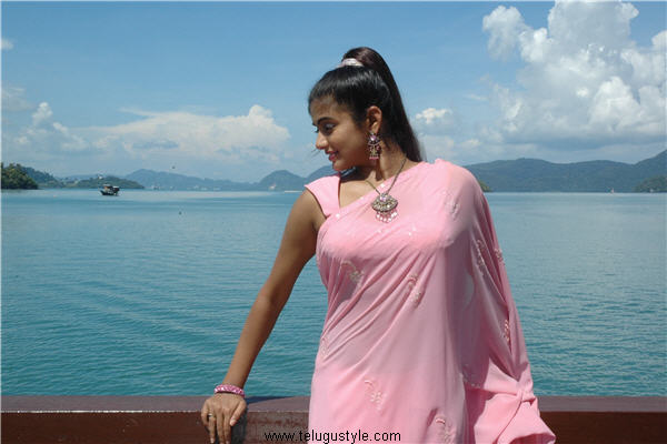 Priyamani 1 - Dusky Priyamani super Hot Wallpaper in Pink Saree