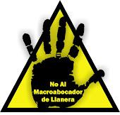 No al macrovertedero de Llanera (Valencia)