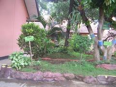 Taman sekolahku