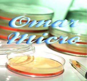 Omar microbiology