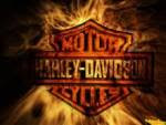 Harley-Davidson Espaa