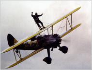 flightwalker