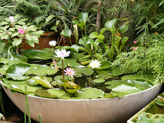 Jardines y estanques mini estanques for Mini estanques caseros