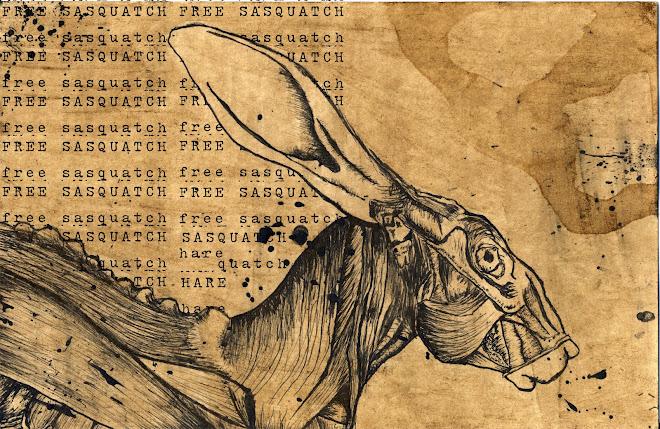 Free Sasquatch