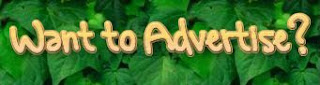 Advertise on the Houseplant Care Blog