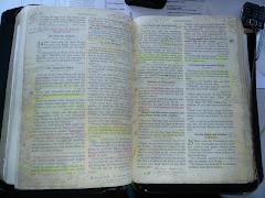 Die Bibel = Gottes ewiges Wort