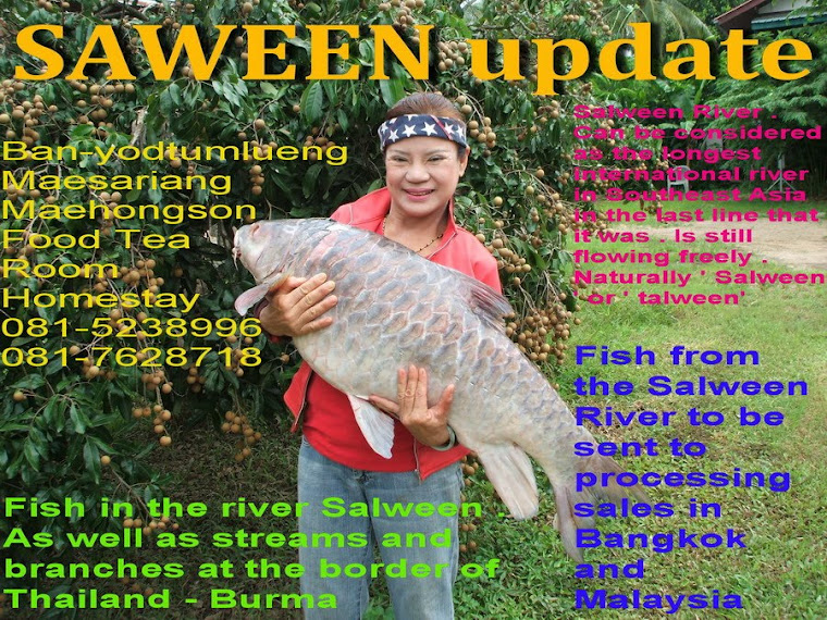 salween update