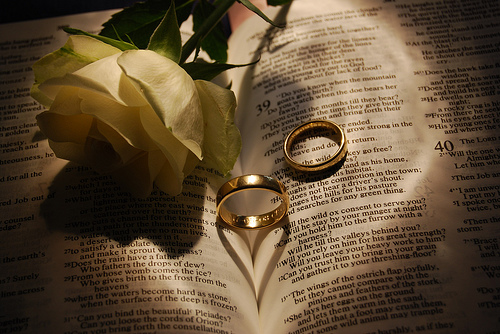 Turid s blog two wedding rings and roses on a bible with genesis text