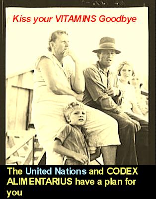 http://1.bp.blogspot.com/_qLAIskTQXUc/TQqCYkKGSEI/AAAAAAAAFNQ/EcV9UzxnfrY/s1600/codex_alimentarius_united_nations_b.jpg