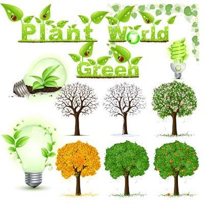 Vector Plant Green World