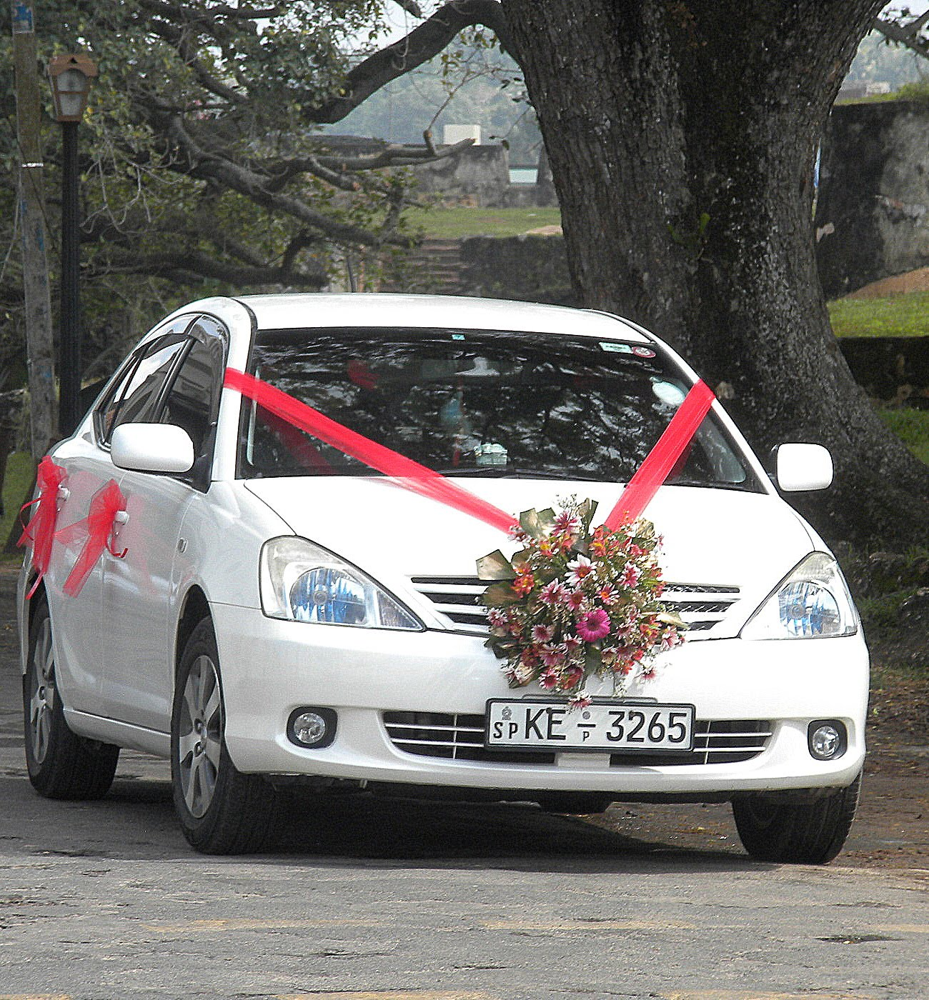 10 Best Wedding Cars Decorations 2014