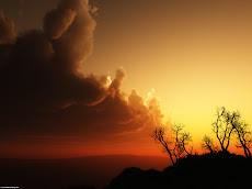 I will awaken the dawn!