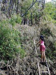 [ma-ao.bamboo+playground]