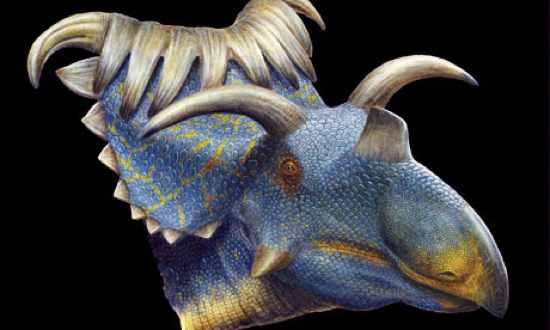 kosmoceratops horned dino 008 10 Dinosaurus Bertanduk Paling Menakjubkan