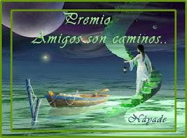 PREMIO AMIGOS SON CAMINOS