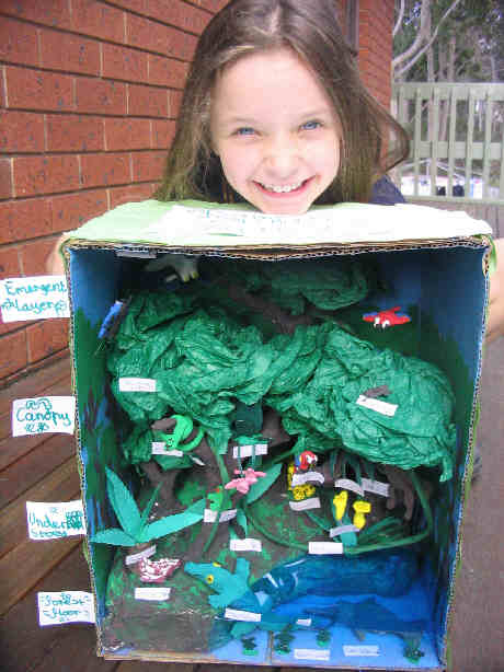 Elementary Habitat Shoe Box Project http://jeaninallhonesty.blogspot.com/2007/12/genesis-of-rainforest.html