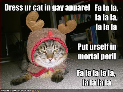 Christmas LOLcat,Lolcat Lolcatz Lowlcaz desktop wallpaper