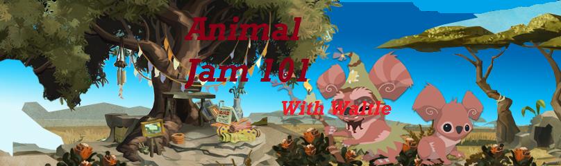 Animal Jam 101