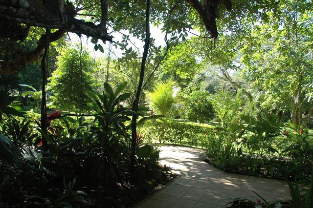 Enter the Luxurious Tropical Gardens of Jaco Hotel DoceLunas