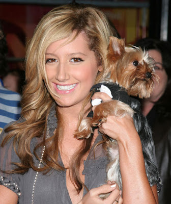 Ashley Tisdale Blonde Hairstyles 05