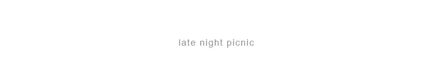 Late Night Picnic