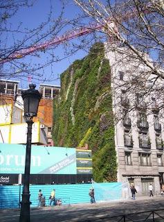 Muros verdes fachada activa beneficios de los muros verdes for Muros verdes beneficios