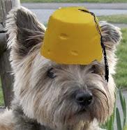 cheese dougal